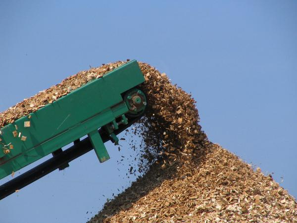 Conveyor belt piles up the wood chips With a conveyor belt accumulates the freshly hacked wood chips to mountains.